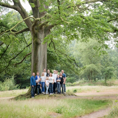 HEIJBLOM FOTOGRAFIE-familiefotografie-Mastbos-Breda-familie-onder-een-boom