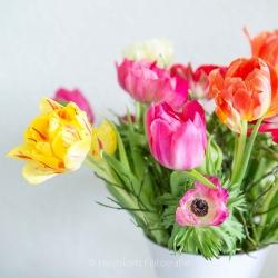 https://www.heijblomfotografie.nl/wp-content/uploads/2017/06/HEIJBLOM-FOTOGRAFIE-over-mij-bloemen-in-een-vaas.jpg